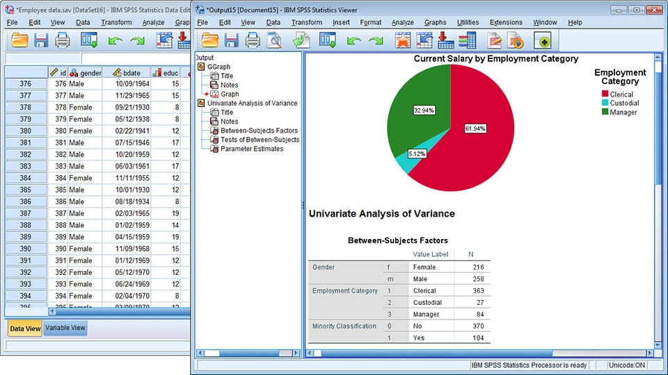 SPSS Statistics full screenshot
