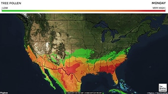 See where there is the highest concentration of pollen in the U.S.