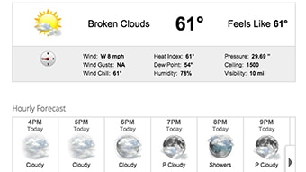 Daily forecast web widget through Max Web.