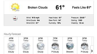 Daily forecast web widget through Max Web.