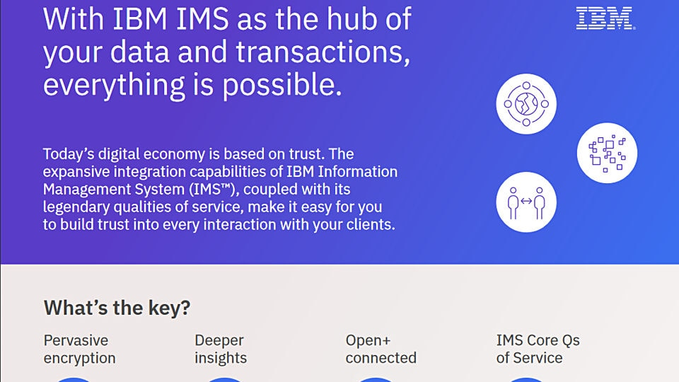 IBM Information Management System 15